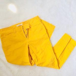 LOFT • Yellow Capri's • Size 6.